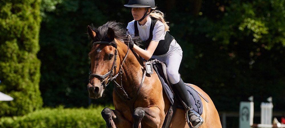 Magdalene pony