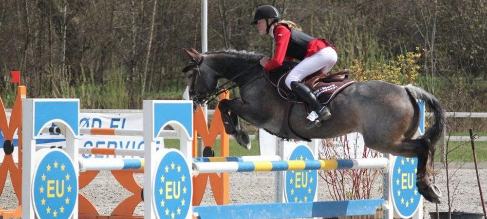 eu spring pony